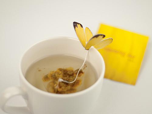 BUTTERFLY TEA by Yena Lee